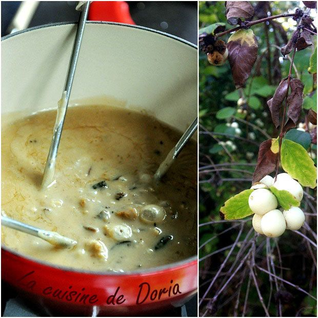 Fondue au Brie de Meaux et champignons des bois