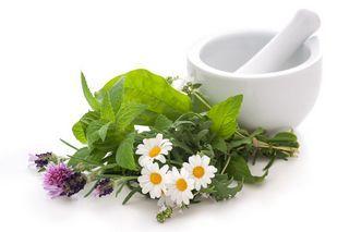 herbs for gaba