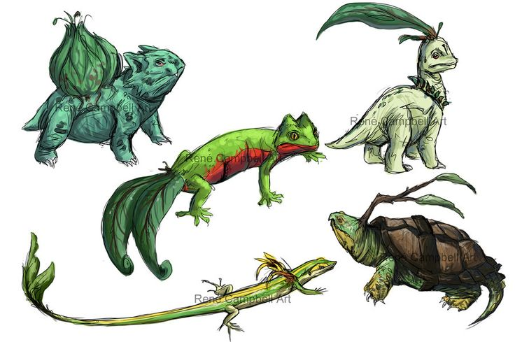 Realistic Pokemon Sketches: Grass Starters by ~nauvasca on deviantART