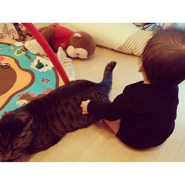 黒猫を二匹発見✨ #泣いたら駆けつけてくれるメソ君 #いつも私を助けてくれるメソ君 #猫と赤ちゃん #親バカ部 #愛娘  #愛猫