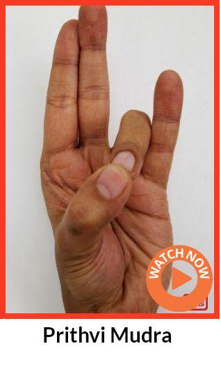 Prithvi Mudra - Restaure chakra racine de l'énergie. Fournir la nourriture à tous les organes ayant une déficience quelconque. Bon pour les os, la peau, le cartilage, les ongles et les cheveux. Fournit la stabilité à des gens qui sont faibles. Traite de fatigue chronique, l'ostéoporose, la peau sèche, la chute des cheveux, les ongles cassants, sensation de brûlure et l'inflammation, les ulcères d'estomac et de fièvre. Stim. corps température et le foie. Pour 15 min quand vous vous sentez le…