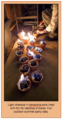 Great Summertime S'mores idea.