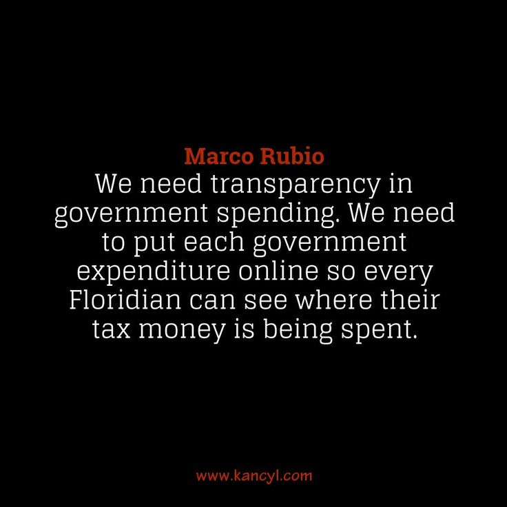 """""""We need transparency in government spending. We need to put each government expenditure online so every Floridian can see where their tax money is being spent."""", Marco Rubio"""
