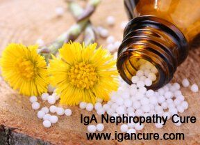 FSGS, eGFR 15 and Creatinine 4.4: Which Homeopathic Medicine Is Good