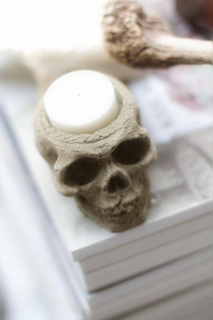 Skull in concrete