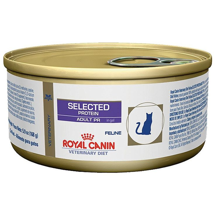 Royal Canin Hypoallergenic Rabbit and Pea Cat Food 24 5.9 oz cans ^^ Remarkable product available now. : Cat food