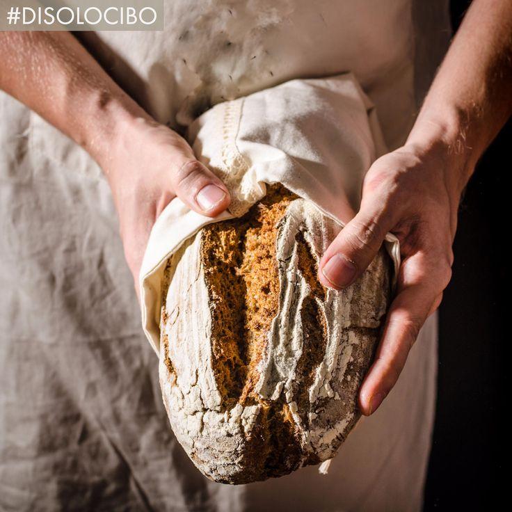 Fare il pane è ritornare all'elemento fondamentale che ci ha sfamato per centinaia di anni. #disolocibo