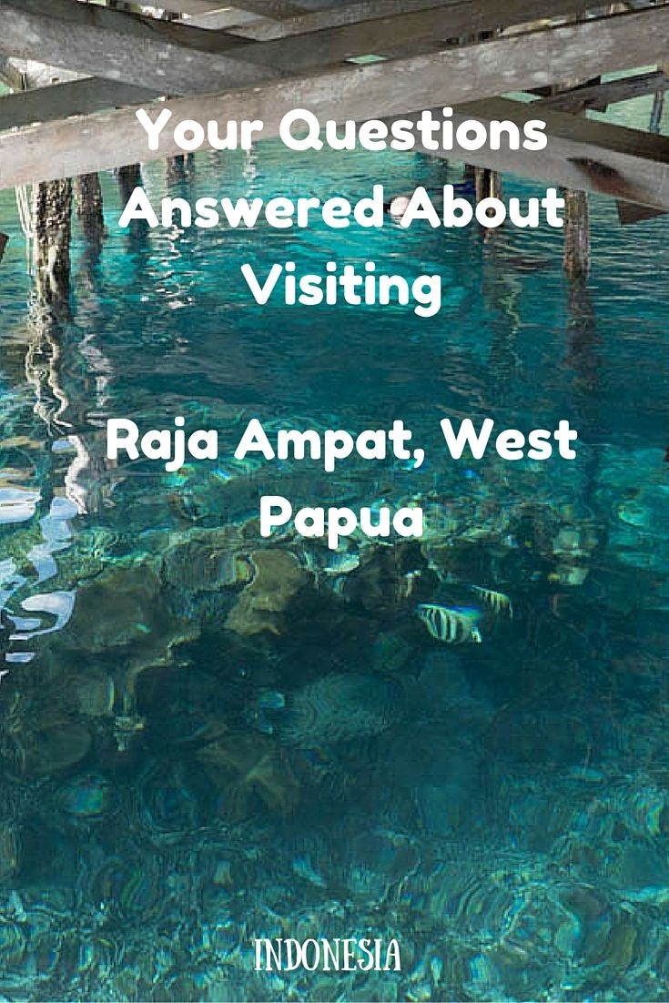 Your Questions Answered About Visiting Raja Ampat, West Papua. Since our recent, and simply wonderful visit to Raja Ampat we have received many, many questions and these are Your Questions Answered About Visiting Raja Ampat, West Papua. We will address as many of those questions here, or at least point you in the right direction, so that you too, can experience this enchanting paradise – both above and below the sea. Raja Ampat is part of the Coral Triangle, which contains the richest…