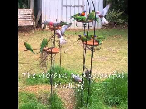 Why I love Australia, stumulus video clip.