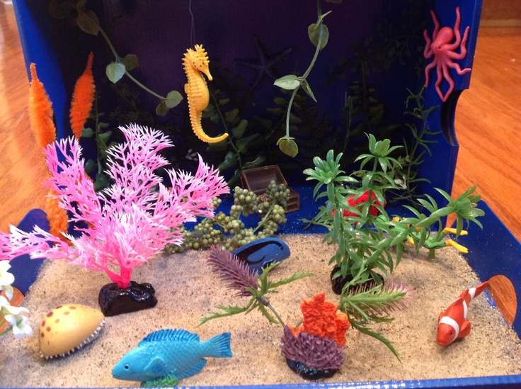 25+ best ideas about Coral reef biome on Pinterest   Coral reef ...