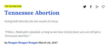 Image result for urban dictionary funny