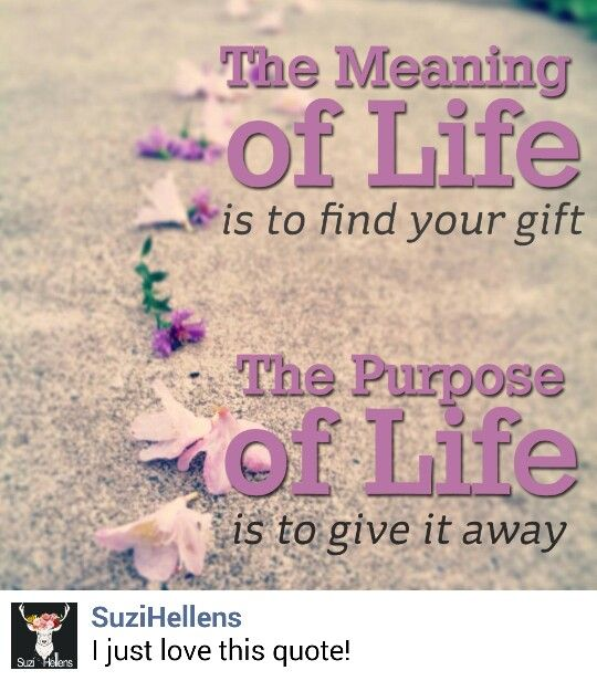 The meaning of life...