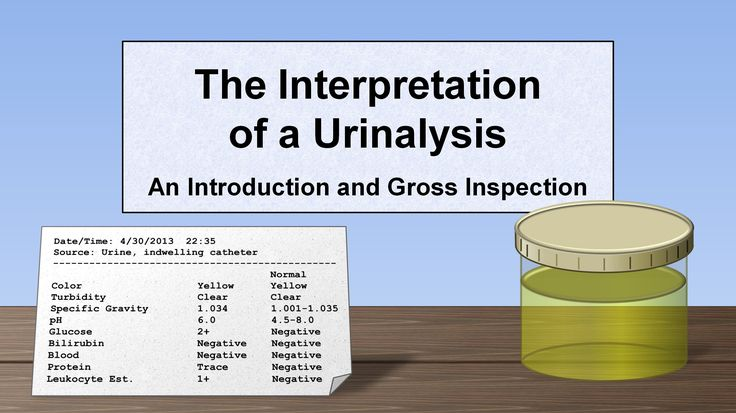 Interpretation of the Urinalysis (Part 1) - Introduction and Inspection