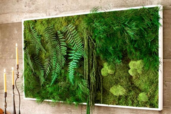 Fern and Moss Wall Art - Like having a living vertical jungle in your living room. And you don't have to water it!