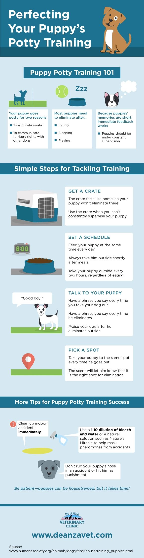 Do you know how to potty train your puppy? Start by setting a feeding schedule! Click over to this San Jose animal hospital infographic to get more tips that will help you potty train your furry friend.