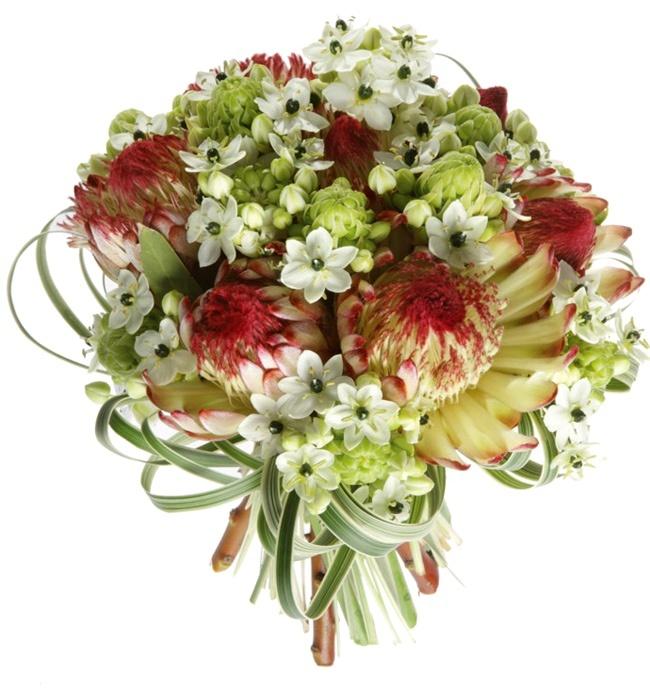 Capoverde  Bouquet di Protee, Ornitogallo e Lilligrass.  Foto Carlo Zanni.