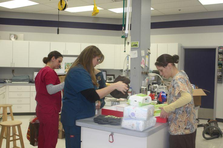 Tiffanie, Melissa, and Nicolette organizing #Animal Hospital #Veterinarian #Pets #Vet #KAH #FrederickMaryland #Christmas #GivingBack