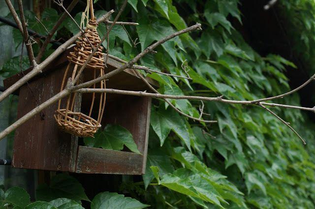 The Fairy Thing: Bolyongások: Jókai-kert