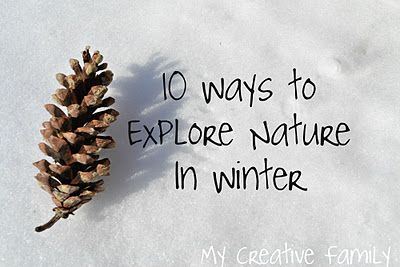 10 Ways to Explore Nature In the Winter ~ Creative Family Fun