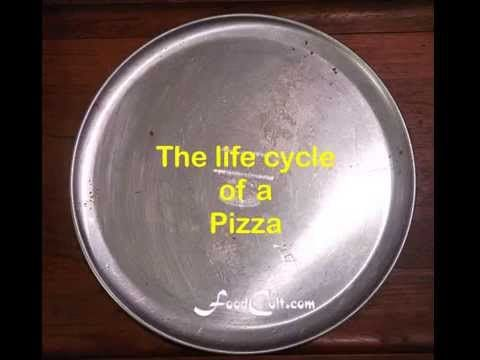 The Life Cycle Of A Pizza