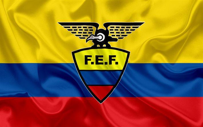 Download wallpapers Ecuador national football team, logo, emblem, Ecuadorian flag, football federation, World Championship, football, silk texture