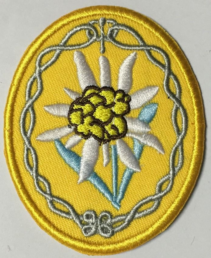 WWII German African mountain division troops elite edelweiss gold patch