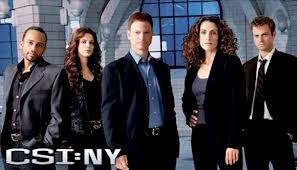 Free Streaming Video CSI: NY Season 9 Episode 12 (Full Video) CSI: NY Season 9 Episode 12 - Civilized Lies Summary: When a beloved off-duty NYPD officer perishes in a robbery, the CSIs use the art of interrogation to break down their suspects and get to the truth.