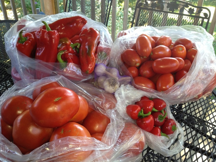What To Do With Lots of Tomatoes and Peppers
