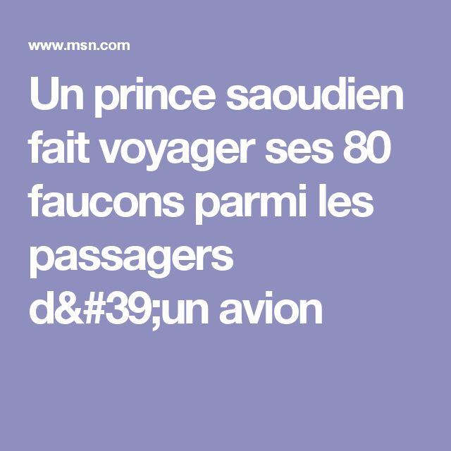 Un prince saoudien fait voyager ses 80 faucons parmi les passagers d'un avion