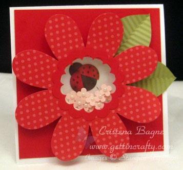 Red ladybug shaker card - c u t e!: Red Ladybugs, Ladybugs Flowers, Shakers Cards, Cards Ideas, Cards Scrapbook, Ladybugs Shakers, Birthday Cards, Shaker Cards, Cards Tutorials