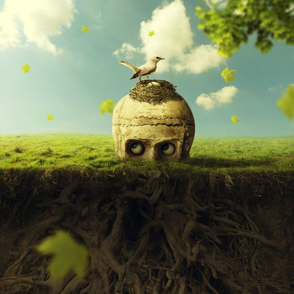 Best Photoshop Photo Manipulations Images On Pinterest Adobe - Photographer uses photoshop to create surreal dreamy composite images