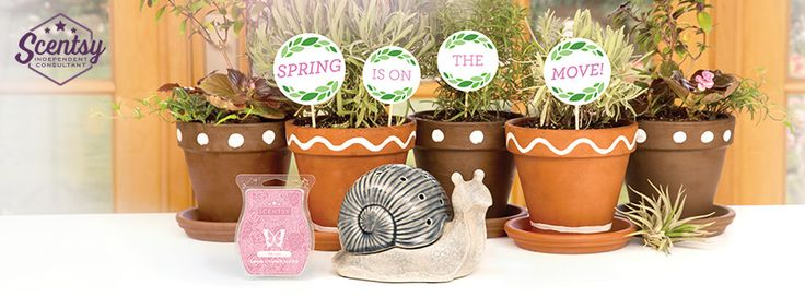 17 Best Images About Scentsy On Pinterest Trip To Disney World Scentsy Diffuser And Month Of