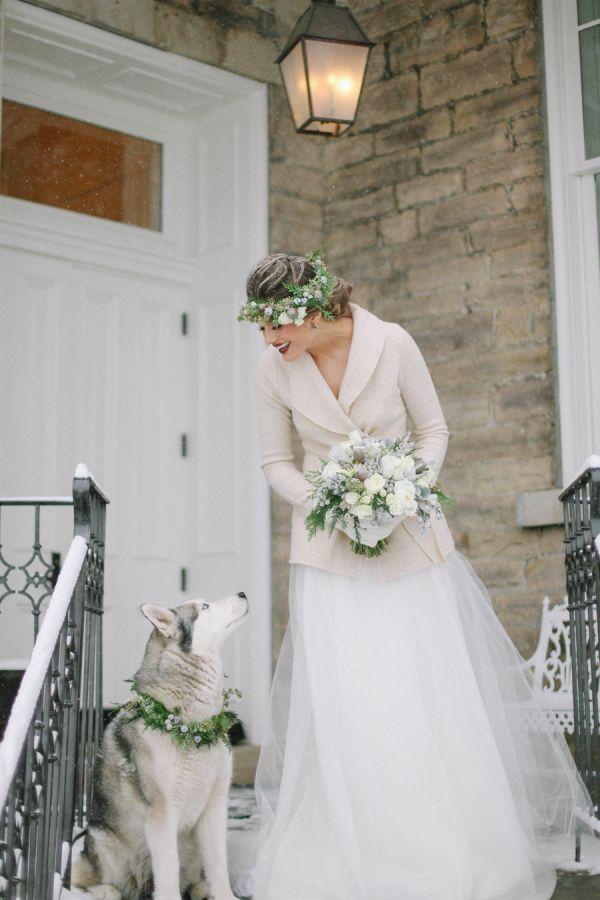 Winter Bride and Husky