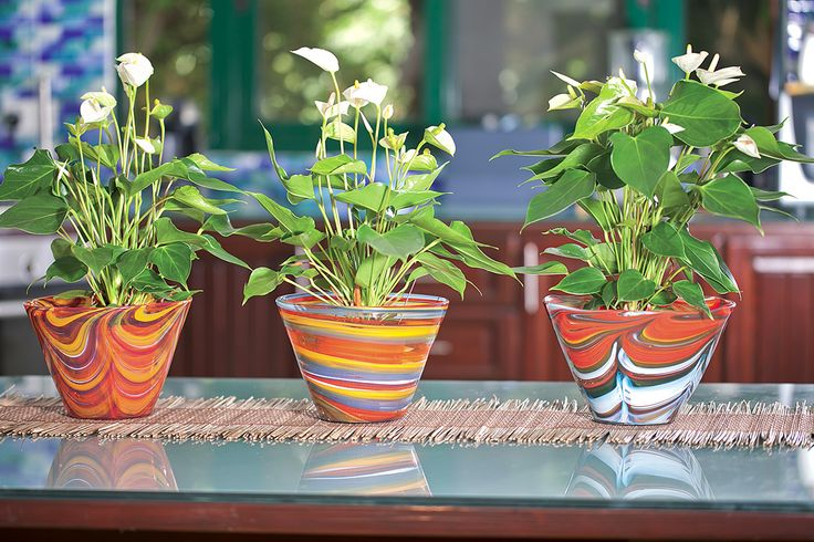 Purchase direct with international shipping: https://www.mdinaglass.com.mt/catalogsearch/result/?q=flower+pots