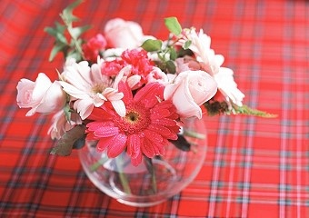 Some tips for keeping flowers - use clear tape to make a grid to hold your flowers up. Give your wilting tulips a shot of vodka.Flower Fresh, Univers Flower, Wilted Tulip, Flower Shops, Clear Tape