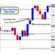 Forex victory system