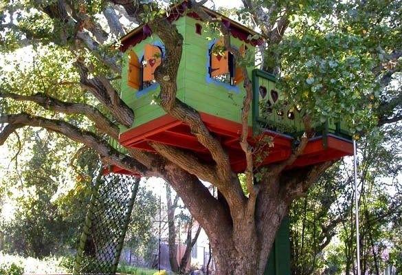 Jak zbudować domek na drzewie? - Blog stolarski, czyli wszystko o stolarce oczami amatora
