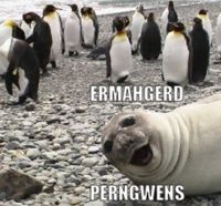 Ermahgerd! Lol --> took me two pronunciations to figure out what that meant bahahaha