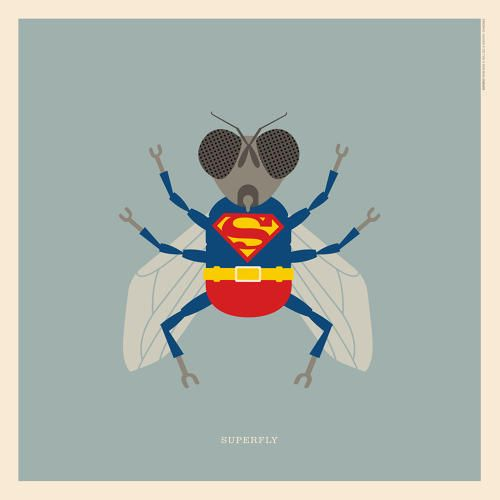 """Curtis #Mayfield's """"#Superfly""""   An Illustrated Guide To Every Animal In Rock Music   Co.Design   business + design"""