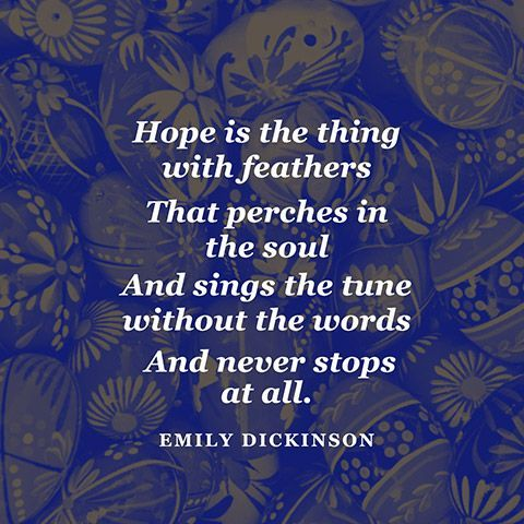 Look for the feathers. #Hope