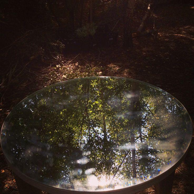 Mirror forest