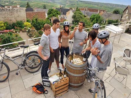 Découvrez les paysages du Val de Loire, faites-les vendanges à Vélo ! #vendanges #vins #france