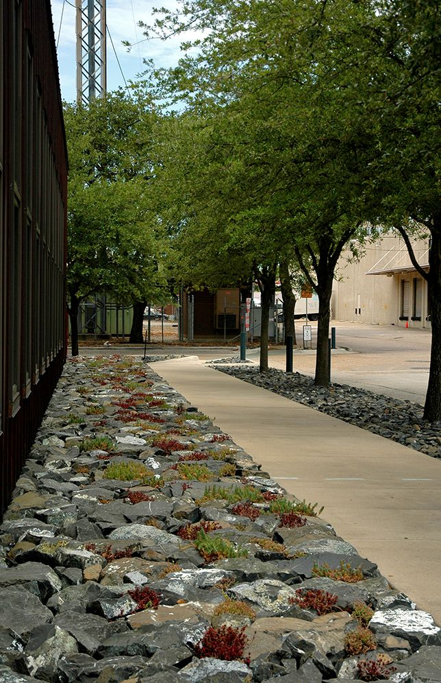 Excellent use of ugly rock to create a back-of-sidewalk space no one can ever use, enjoy or care about. Bravo!