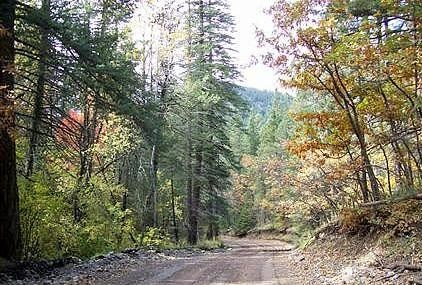 Sacramento Mountains, Timberon, NM  (our place is on this road...love it)