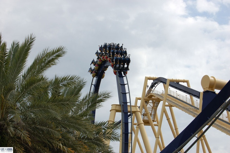 16 Best Images About Coasters On Pinterest Roller Coasters The Great White And Hollywood Studios