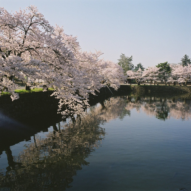 Yonezawa Yamagata Japan by ogino.taro, via Flickr