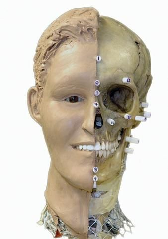 forensic anthropology | TNJN - Forensic anthropology exhibit opens