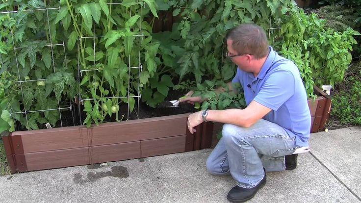 How to garden: Starting a Vegetable Garden - https://www.lovemyhome.space/how-to-garden-starting-a-vegetable-garden/
