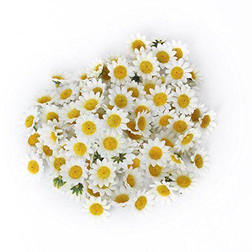 100 x Marguerite de Gerbera Artificielle pour DIY Mariage Partie - Blanc Générique http://www.amazon.fr/dp/B00H36VTWW/ref=cm_sw_r_pi_dp_t0i-vb1ND12TF