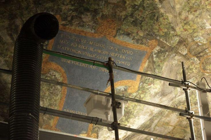 Le pareti della sala dovevano magicamente 'scomparire' mostrando, sotto un gigantesco padiglione vegetale sorretto da 16 alberi di gelso moro, il paesaggio all'esterno, con in lontananza rocce scoscese, poche case, una chiesa e un campanile. Così si doveva originariamente presentare la Sala d